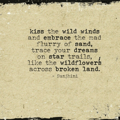 Winds: kiss the wild winds  and embrace the mad  flurry of sand,  trace your dreams  on star trails,  like the wildflowerg  across broken land.  Sunjhini