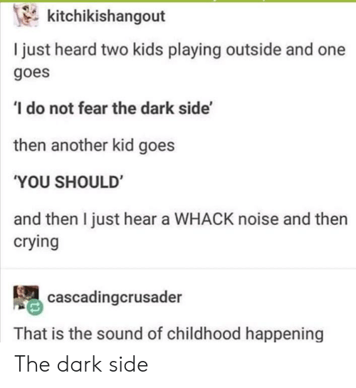 Two Kids: kitchikishangout  I just heard two kids playing outside and one  goes  do not fear the dark side'  then another kid goes  'YOU SHOULD  and then I just hear a WHACK noise and then  crying  cascadingcrusader  That is the sound of childhood happening The dark side