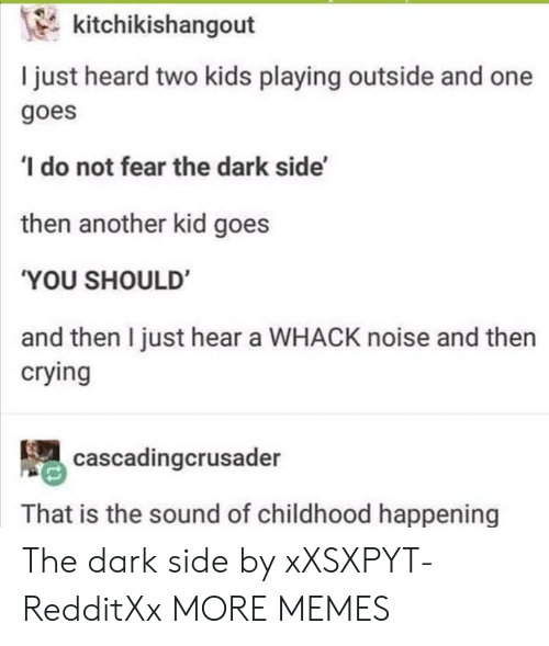 Two Kids: kitchikishangout  I just heard two kids playing outside and one  goes  do not fear the dark side'  then another kid goes  'YOU SHOULD  and then I just hear a WHACK noise and then  crying  cascadingcrusader  That is the sound of childhood happening The dark side by xXSXPYT-RedditXx MORE MEMES
