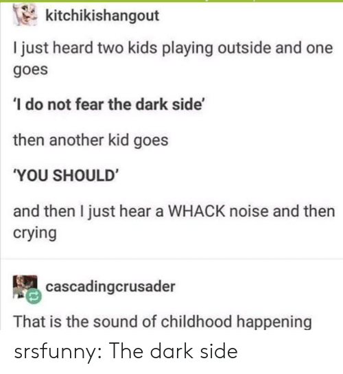 Two Kids: kitchikishangout  I just heard two kids playing outside and one  goes  do not fear the dark side'  then another kid goes  'YOU SHOULD  and then I just hear a WHACK noise and then  crying  cascadingcrusader  That is the sound of childhood happening srsfunny:  The dark side