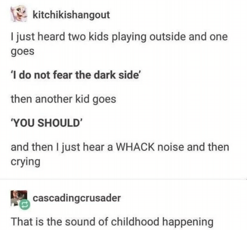 Two Kids: kitchikishangout  I just heard two kids playing outside and one  goes  I do not fear the dark side'  then another kid goes  YOU SHOULD'  and then I just hear a WHACK noise and then  crying  cascadingcrusader  That is the sound of childhood happening