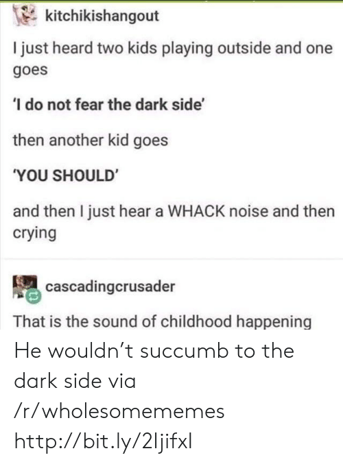 Two Kids: kitchikishangout  I just heard two kids playing outside and one  goes  ' do not fear the dark side'  then another kid goes  'YOU SHOULD'  and then I just hear a WHACK noise and then  crying  cascadingcrusader  That is the sound of childhood happening He wouldn't succumb to the dark side via /r/wholesomememes http://bit.ly/2IjifxI