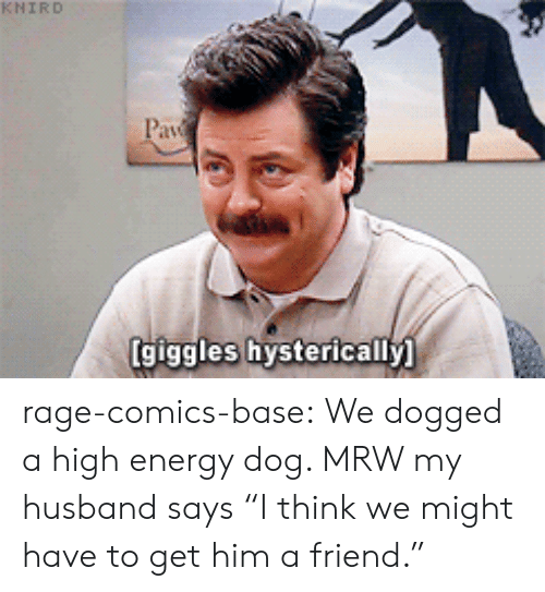 "High Energy: KNİRD  giggles hysterically rage-comics-base:  We dogged a high energy dog. MRW my husband says ""I think we might have to get him a friend."""