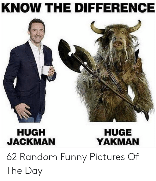 Funny Pictures Of: KNOW THE DIFFERENCE  HUGH  JACKMAN  HUGE  YAKMAN 62 Random Funny Pictures Of The Day