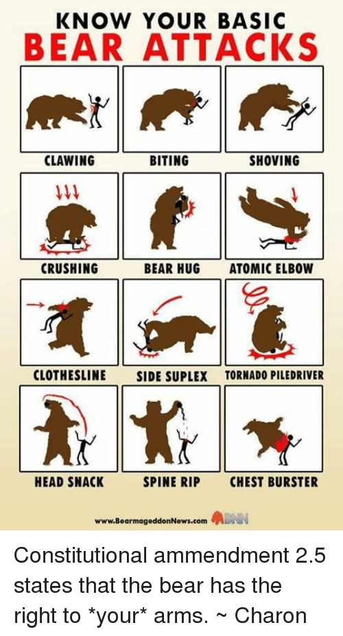 piledriver: KNOW YOUR BASIC  BEAR ATTACKS  CLAWING  BITING  SHOVING  CRUSHING  BEAR HUG  ATOMIC ELBOW  CLOTHESLINE  SIDE SUPLEX TORNADO PILEDRIVER  HEAD SNACK  SPINE RIP  CHEST BURSTER  www.BearmageddonNews.com Constitutional ammendment 2.5 states that the bear has the right to *your* arms. ~ Charon