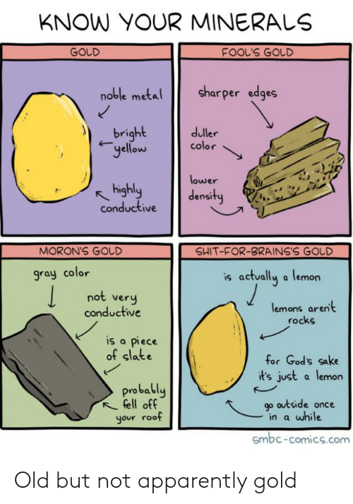 Apparently, Reddit, and Shit: KNOW YOUR MINERALS  FOOL'S GOLD  GOLD  sharper edges  noble metal  _bright  yellew  duller  color  lower  highly  conductive  density  SHIT-FOR-BRAINS'S GOLD  MORON'S GOLD  is actually a lemon  gray color  not very  conductive  lemons arent  rocks  is a piece  of slate  for God's sake  it's just a lemon  probably  fell off  your roof  go outside once  in a while  Gmbc-comics.com Old but not apparently gold