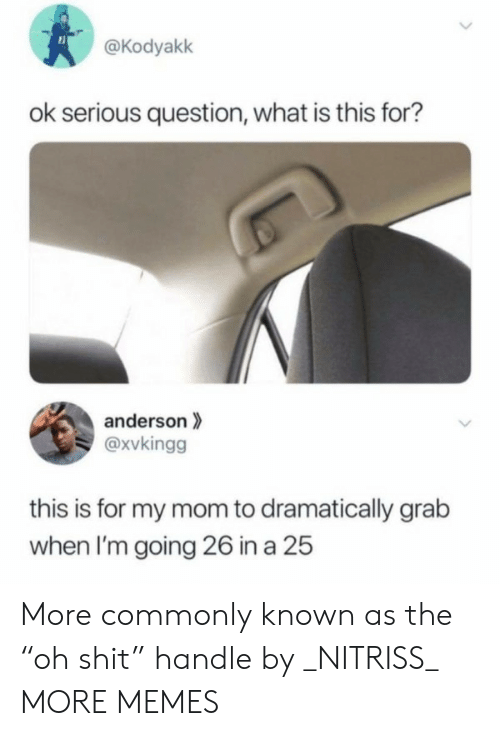 """what is this: @Kodyakk  ok serious question, what is this for?  anderson  @xvkingg  this is for my mom to dramatically grab  when I'm going 26 in a 25  > More commonly known as the """"oh shit"""" handle by _NITRISS_ MORE MEMES"""