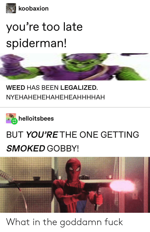 Spiderman: koobaxion  you're too late  spiderman!  WEED HAS BEEN LEGALIZED  NYEHAHEHЕНАНЕНЕАННННАН  helloitsbees  BUT YOU'RE THE ONE GETTING  SMOKED GOBBY! What in the goddamn fuck