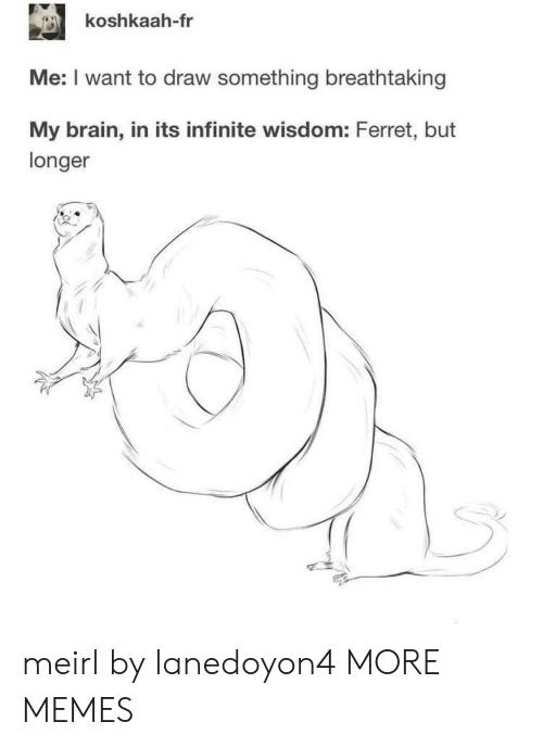 Dank, Memes, and Target: koshkaah-fr  Me: I want to draw something breathtaking  My brain, in its infinite wisdom: Ferret, but  longer meirl by lanedoyon4 MORE MEMES