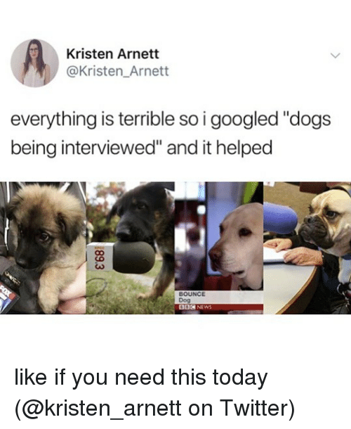 "Dogs, Memes, and News: Kristen Arnett  @Kristen_Arnett  everything is terrible so i googled ""dogs  being interviewed"" and it helped  BOUNCE  Dog  002 NEWS like if you need this today (@kristen_arnett on Twitter)"