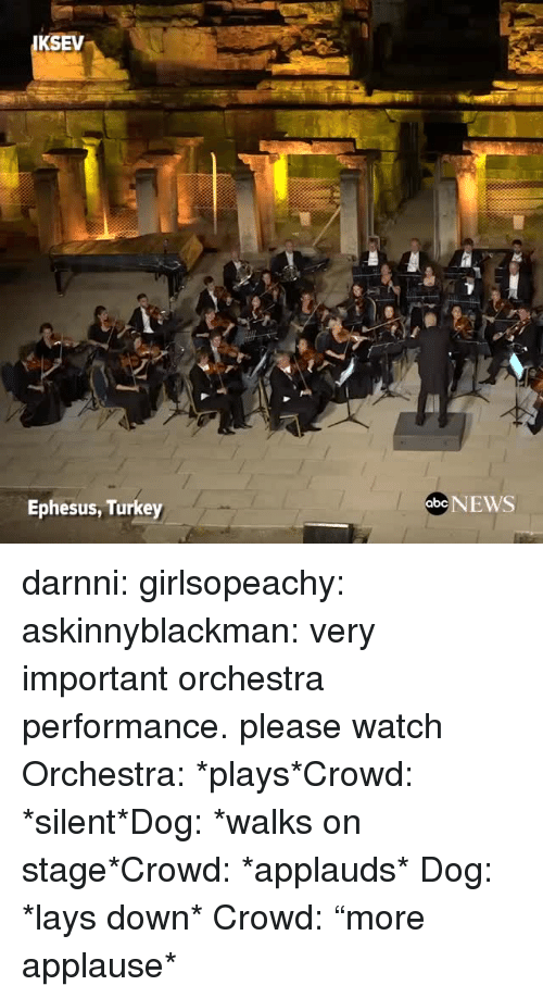 "Lay's, News, and Target: KSEV  Ephesus, Turkey  abe NEWS darnni: girlsopeachy:  askinnyblackman:  very important orchestra performance. please watch  Orchestra: *plays*Crowd: *silent*Dog: *walks on stage*Crowd: *applauds*   Dog: *lays down* Crowd: ""more applause*"