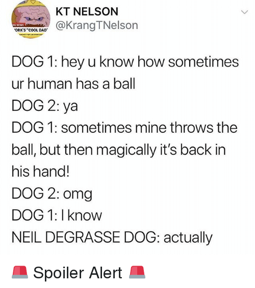 "orks: KT NELSON  KrangTNelson  ORK'S ""cOOL DAD  DOG 1: hey u know how sometimes  ur human has a ball  DOG 2: ya  DOG 1: sometimes mine throws the  ball, but then magically it's back in  his hand!  DOG 2: omg  DOG 1: I know  NEIL DEGRASSE DOG: actually 🚨 Spoiler Alert 🚨"