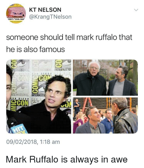 "orks: KT NELSON  @KrangTNelson  ORK'S ""COOL DAD  someone should tell mark ruffalo that  he is also famous  THRİİ INTERNATIO!  CO  ERMATIONAL  TERNATIO 뇨  09/02/2018, 1:18 am Mark Ruffalo is always in awe"