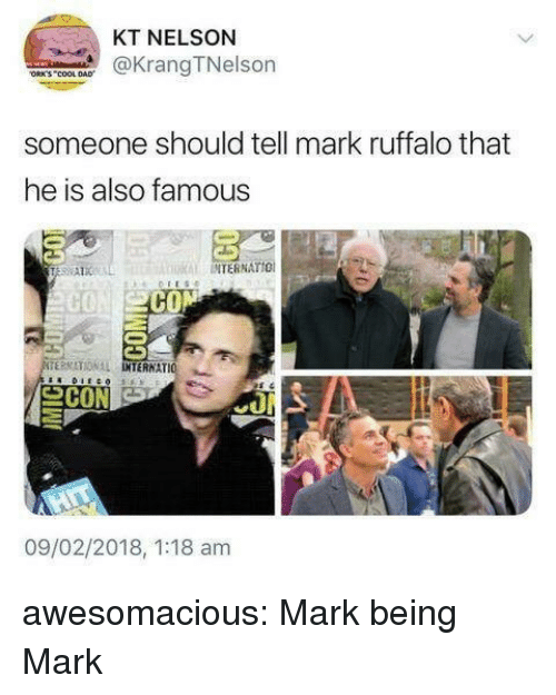 Mark Ruffalo: KT NELSON  KrangTNelson  ORK'S COOL DAD  someone should tell mark ruffalo that  he is also famous  INTERNATIO  CON  TERMATIONAL IO  INTERNAT  09/02/2018, 1:18 am awesomacious:  Mark being Mark