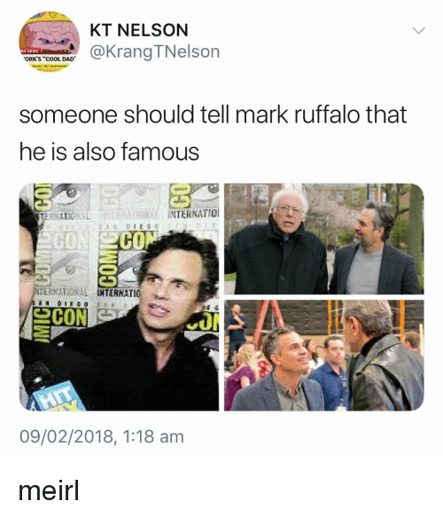 "orks: KT NELSON  @KrangTNelson  ORK'S ""cOOL DAD  someone should tell mark ruffalo that  he is also famous  INTERNATIO  CO  CO  ERNATIONAL  TERNATIO  09/02/2018, 1:18 am meirl"