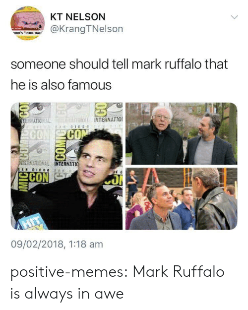 "orks: KT NELSON  @KrangTNelson  ORK'S ""COOL DAD  someone should tell mark ruffalo that  he is also famous  THRİİ INTERNATIO!  CO  ERMATIONAL  TERNATIO 뇨  09/02/2018, 1:18 am positive-memes: Mark Ruffalo is always in awe"