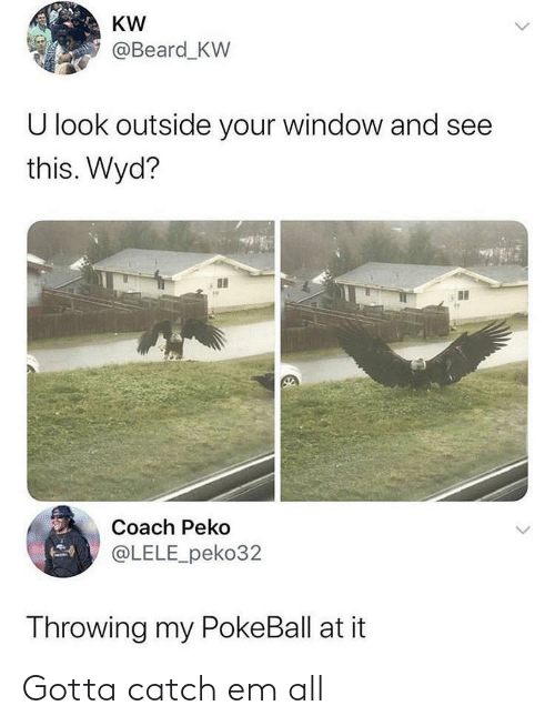 Beard: KW  @Beard_KW  U look outside your window and see  this. Wyd?  Coach Peko  @LELE_peko32  Throwing my PokeBall at it Gotta catch em all