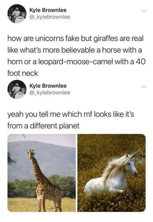 Dank, Fake, and Yeah: Kyle Brownlee  akylebrownlee  how are unicorns fake but giraffes are real  like what's more believable a horse with a  horn or a leopard-moose-camel with a 40  foot neck  Kyle Brownlee  kylebrownlee  yeah you tell me which mf looks like it's  from a different planet