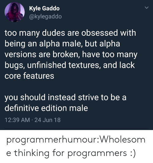 alpha: Kyle Gaddo  @kylegaddo  too many dudes are obsessed with  being an alpha male, but alpha  versions are broken, have too many  bugs, unfinished textures, and lack  core features  you should instead strive to be a  definitive edition male  12:39 AM 24 Jun 18  > programmerhumour:Wholesome thinking for programmers :)