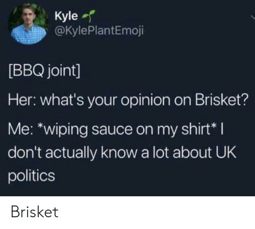 Politics, Sauce, and Her: Kyle  @KylePlantEmoji  [BBQ joint]  Her: what's your opinion on Brisket?  Me: *wiping sauce on my shirt*I  don't actually know a lot about UK  politics Brisket
