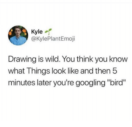 "Wild, Think, and You: Kyle  @KylePlantEmoji  Drawing is wild. You think you know  what Things look like and then!5  minutes later you're googling ""bird"""