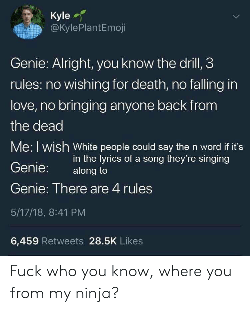 Love, Singing, and White People: Kyle  @KylePlantEmoji  Genie: Alright, you know the drill, 3  rules: no wishing for death, no falling in  love, no bringing anyone back from  the dead  Me: I wish White people could say the n word if it's  Genie: along to  Genie: There are 4 rules  5/17/18, 8:41 PM  6,459 Retweets 28.5K Likes  in the lyrics of a song they're singing Fuck who you know, where you from my ninja?