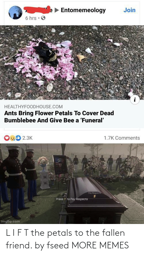 fallen: L I F T the petals to the fallen friend. by fseed MORE MEMES