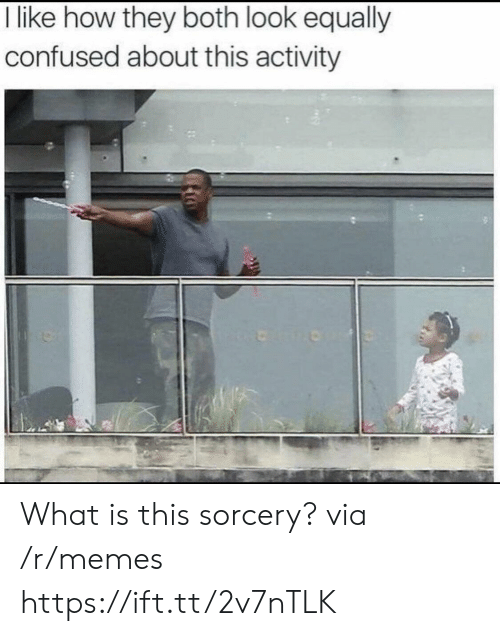 what is this sorcery: l like how tney botn look equally  confused about this activity What is this sorcery? via /r/memes https://ift.tt/2v7nTLK
