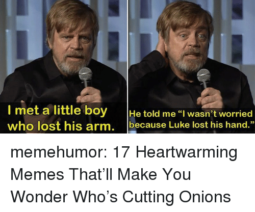"Memes, Tumblr, and Lost: l met a little boy He told me I wasn't worried  who lost his arm, because Luke lost his hand.""  02 memehumor:  17 Heartwarming Memes That'll Make You Wonder Who's Cutting Onions"