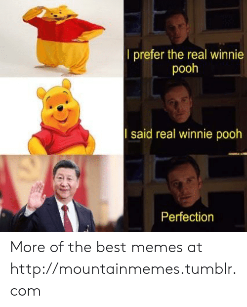 pooh: l prefer the real winnie  pooh  said real winnie pooh  Perfection More of the best memes at http://mountainmemes.tumblr.com