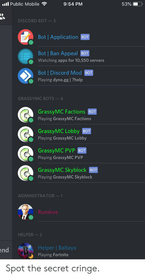 Gg, Reddit, and Apps: l Public Mobile  9:54 PM  53%  DISCORD BOT 3  Bot | Application BOT  Bot Ban Appeal  ВОТ  Watching apps for 10,550 servers  Bot Discord Mod BOT  Playing dyno.gg |?help  GRASSYMC BOTS 4  GrassyMC Factions BOT  Playing GrassyMC Factions  GrassyMC Lobby BOT  Playing GrassyMC Lobby  GrassyMC PVP BOT  Playing GrassyMC PVP  GrassyMC Skyblock BOT  Playing GrassyMC Skyblock  ADMINISTRATOR 1  Russkoe  HELPER 2  Helper Baltaya  Playing Fortnite  end Spot the secret cringe.