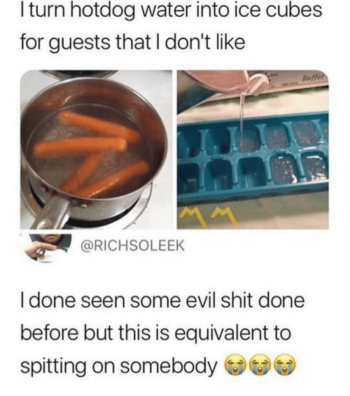 Ice Cubes: l turn hotdog water into ice cubes  for guests that I don't like  Buffet  @RICHSOLEEK  I done seen some evil shit done  before but this is equivalent to  spitting on somebody