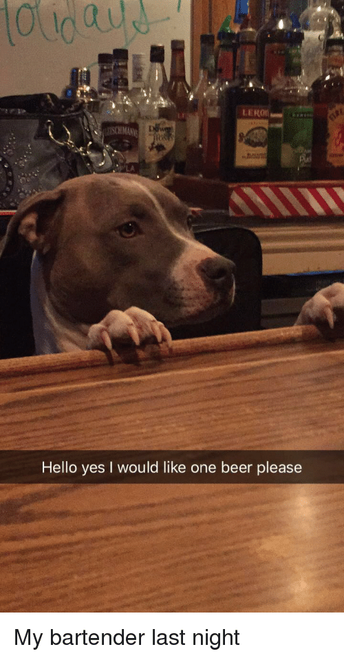 One Beer: LA  Hello yes I would like one beer please My bartender last night
