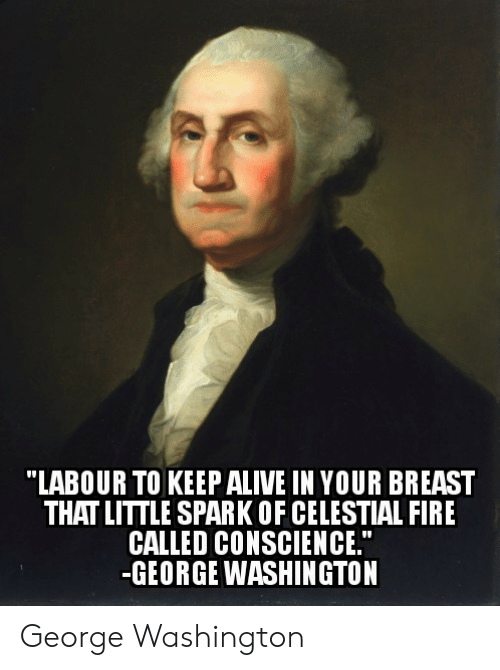 """breast: """"LABOUR TO KEEPALIVE IN YOUR BREAST  THAT LITTLE SPARK OF CELESTIAL FIRE  CALLED CONSCIENCE.""""  -GEORGE WASHINGTON George Washington"""
