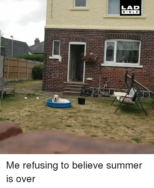 Memes, Summer, and 🤖: LAD  BIBL E Me refusing to believe summer is over