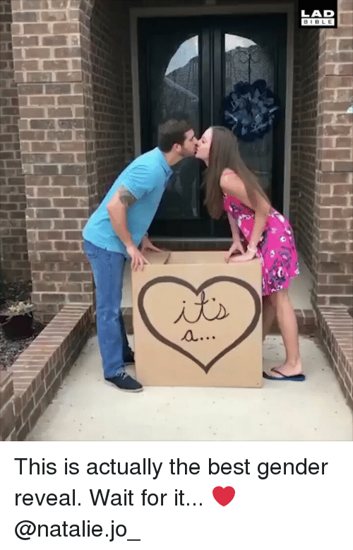 Memes, Best, and 🤖: LAD  BIBL E This is actually the best gender reveal. Wait for it... ❤️@natalie.jo_