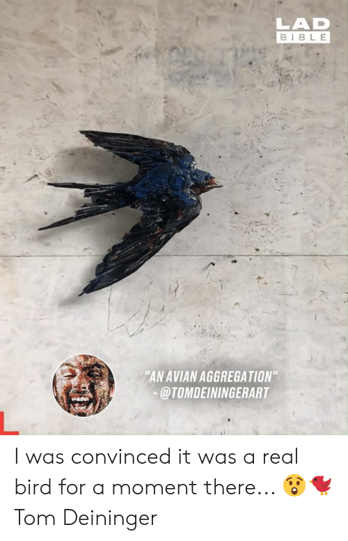 """Dank, Bible, and 🤖: LAD  BIBLE  """"AN AVIAN AGGREGATION""""  @TOMDEININGERART I was convinced it was a real bird for a moment there... 😲🐦  Tom Deininger"""