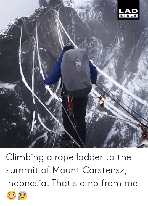 Indonesia: LAD  BIBLE Climbing a rope ladder to the summit of Mount Carstensz, Indonesia. That's a no from me 😳😰