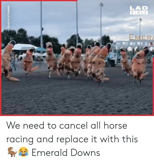 Dank, Bible, and Horse: LAD  BIBLE  EMER  EMERALD  DOWNS] We need to cancel all horse racing and replace it with this 🦖😂  Emerald Downs
