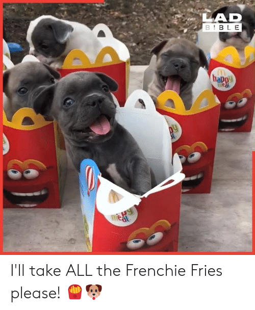 Lad Bible: LAD  BIBLE  happy  1Paw  meat I'll take ALL the Frenchie Fries please! 🍟🐶