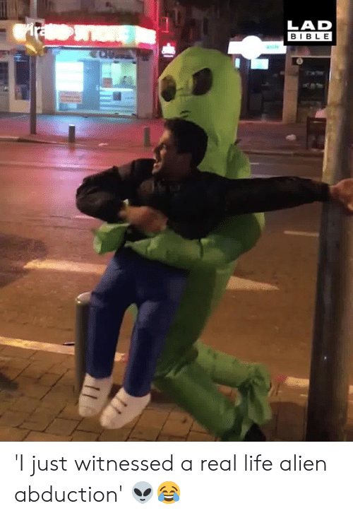 Dank, Life, and Alien: LAD  BIBLE 'I just witnessed a real life alien abduction' 👽😂