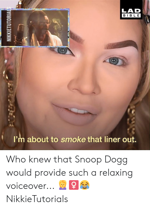 Dank, Snoop, and Snoop Dogg: LAD  BIBLE  I'm about to smoke that liner out. Who knew that Snoop Dogg would provide such a relaxing voiceover... 💆‍♀😂  NikkieTutorials