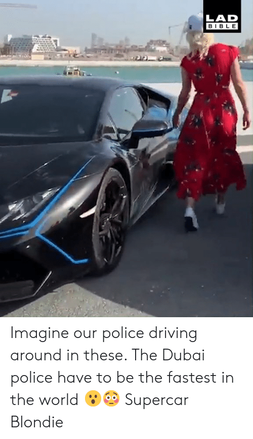 Dank, Driving, and Police: LAD  BIBLE Imagine our police driving around in these. The Dubai police have to be the fastest in the world 😮😳  Supercar Blondie