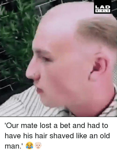Dank, Old Man, and Lost: LAD  BIBLE 'Our mate lost a bet and had to have his hair shaved like an old man.' 😂👴🏻