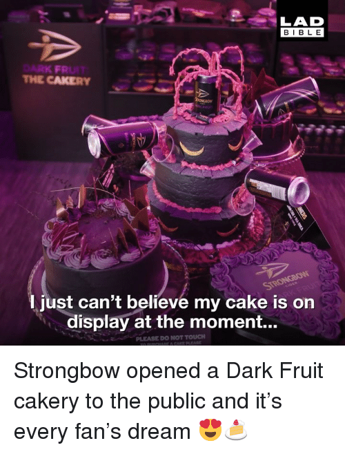Memes, Bible, and Cake: LAD  BIBLE  RK FR  THE CAKERY  just can't believe my cake is on  display at the moment... Strongbow opened a Dark Fruit cakery to the public and it's every fan's dream 😍🍰