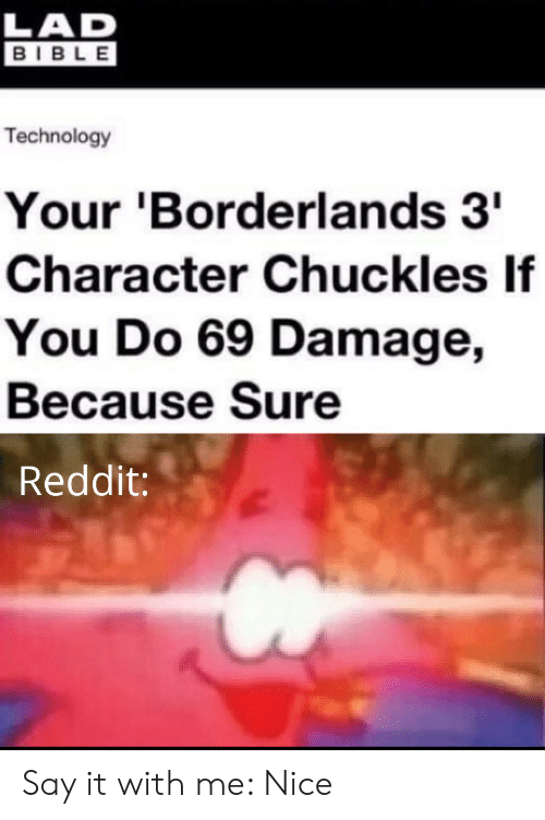Reddit, Say It, and Bible: LAD  BIBLE  Technology  Your 'Borderlands 3  Character Chuckles If  You Do 69 Damage,  Because Sure  Reddit: Say it with me: Nice