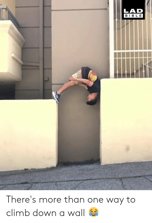 Dank, Bible, and 🤖: LAD  BIBLE There's more than one way to climb down a wall 😂