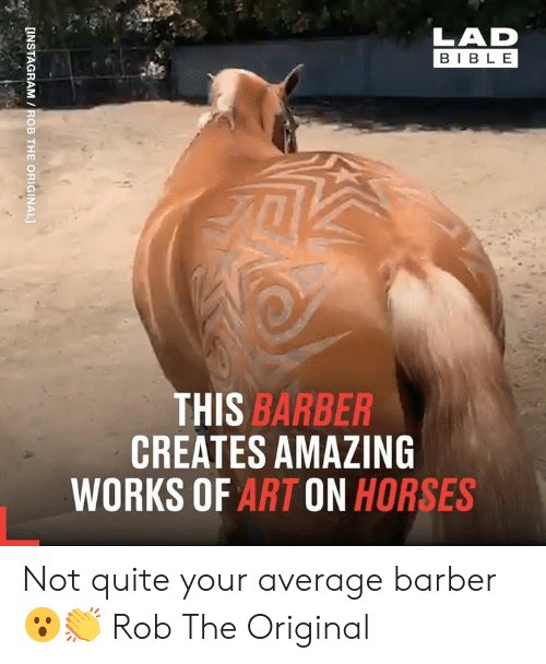 not quite: LAD  BIBLE  THIS BARBER  CREATES AMAZING  WORKS OF ART ON HORSES  [INSTAGRAM /ROB THE ORIGINAL] Not quite your average barber 😮👏  Rob The Original