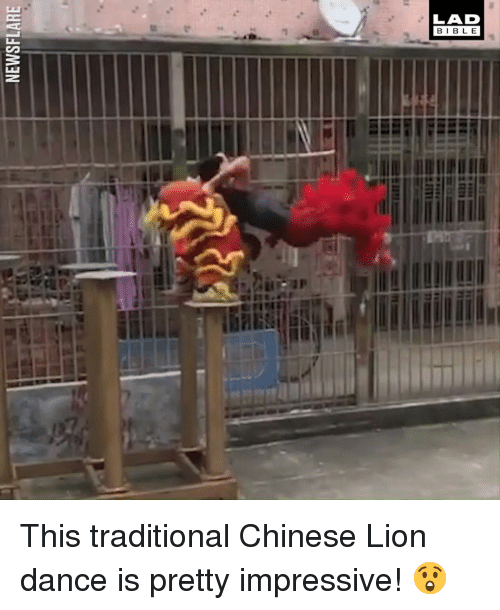 Dank, Bible, and Chinese: LAD  BIBLE This traditional Chinese Lion dance is pretty impressive! 😲