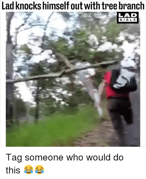 Bibled: Lad knocks himself out with tree branch  LAD  BIBL E Tag someone who would do this 😂😂
